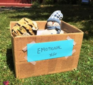 Emotional Clutter Box